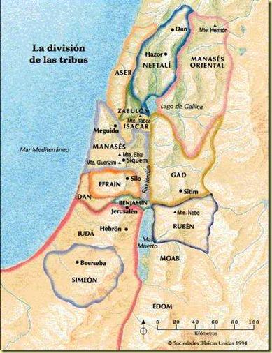 tribusdivision
