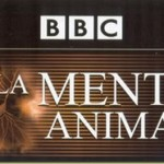 La mente animal (documentales)